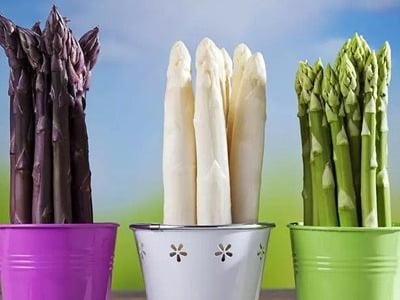 سه گلدان با انواع مارچوبه
